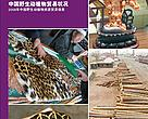 The State of Wildlife Trade in China (2008)
